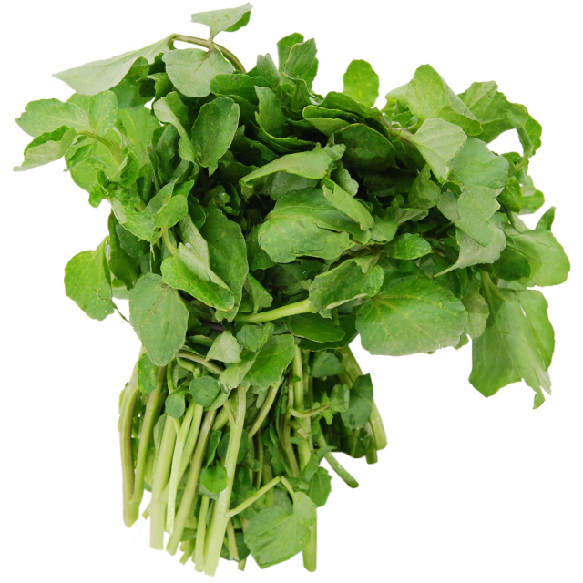 Can You Identify These Leafy Greens?